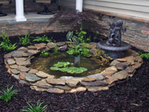 Fish Pond and Landscaping